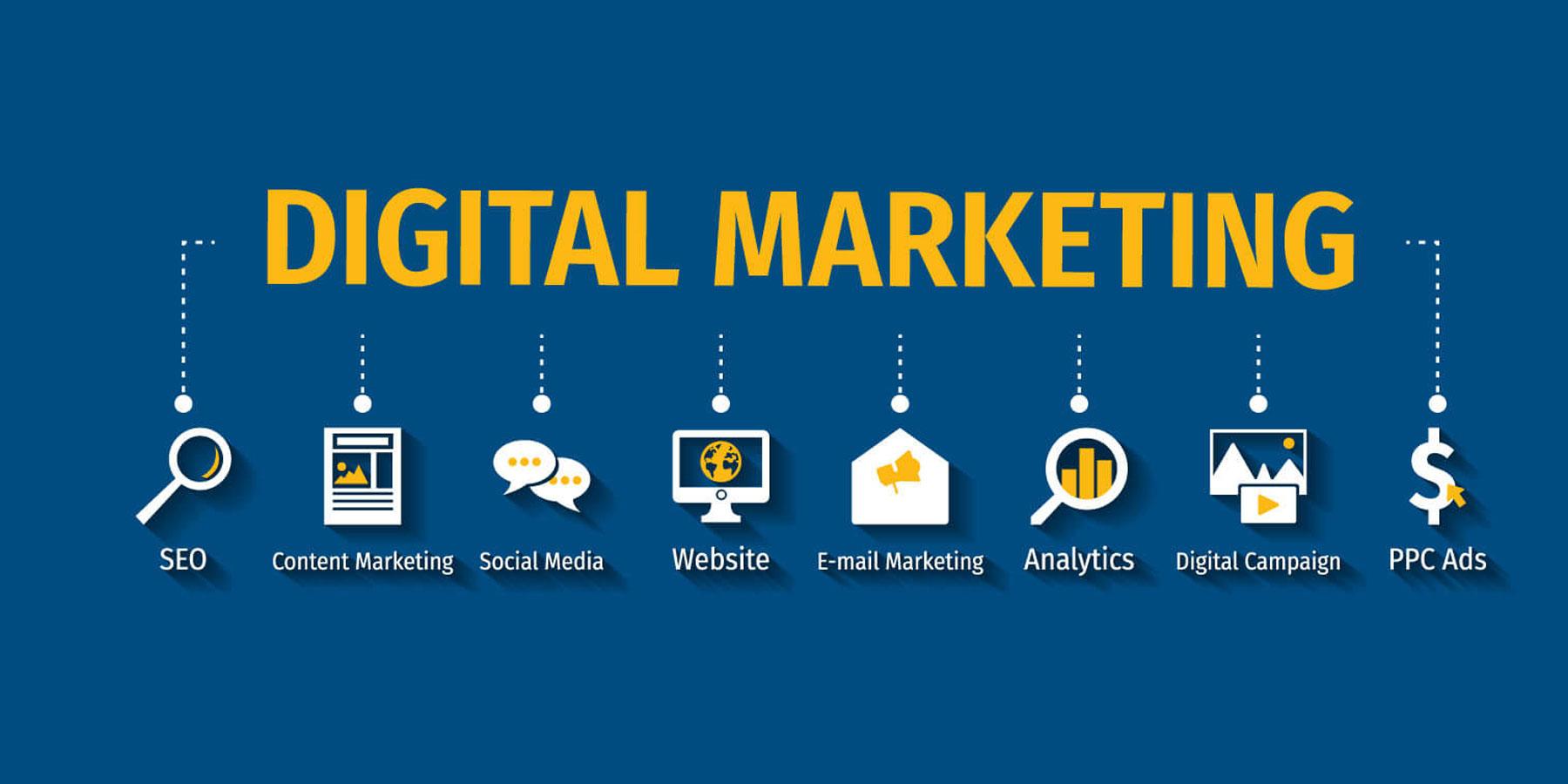 SEO/ Digital Marketing